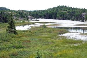 pukaskwa-landscape
