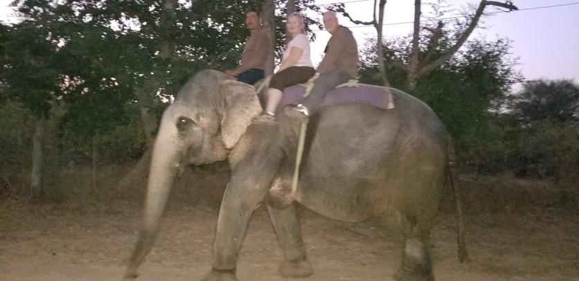 Elephant ride 2 mod