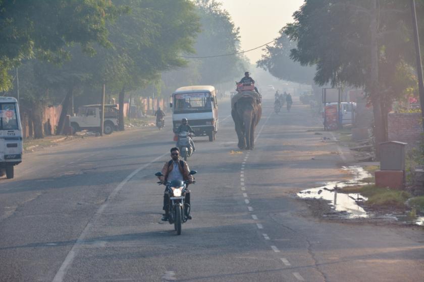 India D7100 -1061_995