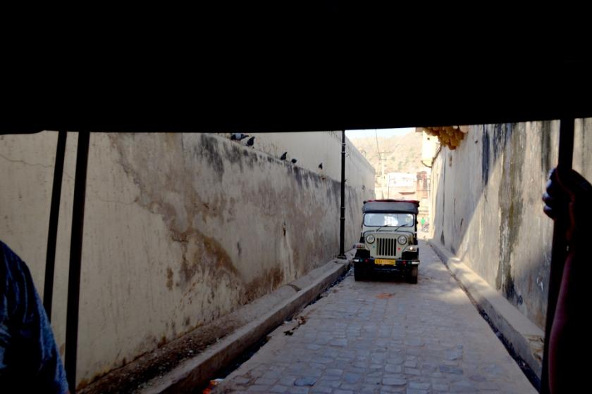 India D7100 -1150_1017