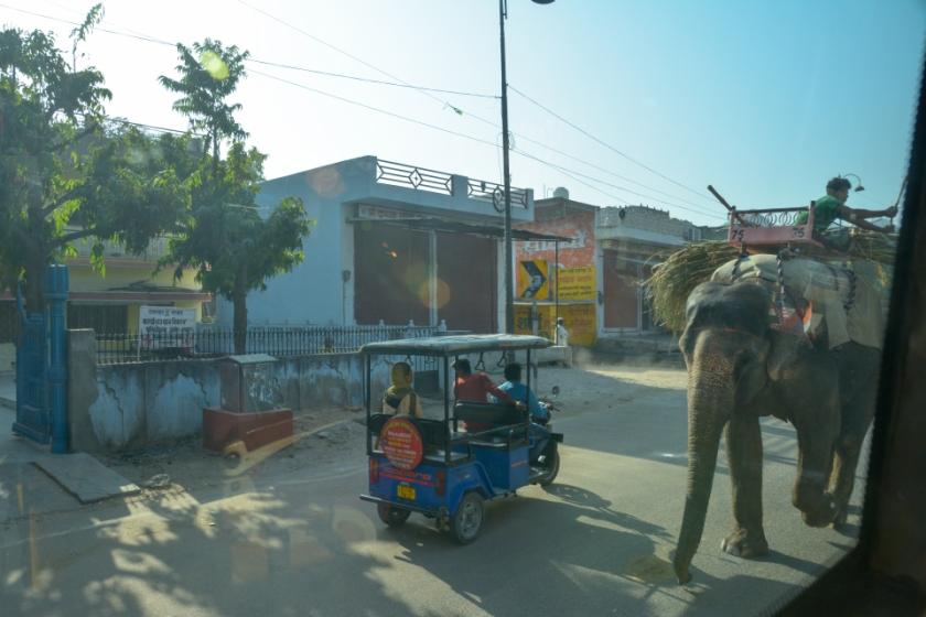 India D7100 -1225_998