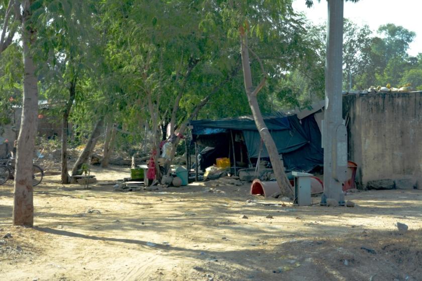 India D7100 -1271_1000