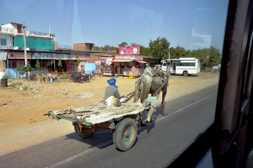 India D7100-1299_1166