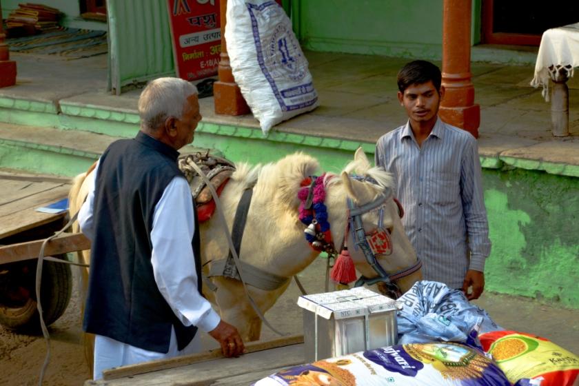 India D7100-1348_1176