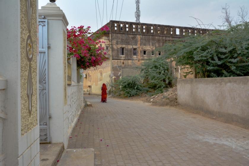 India D7100-1359_1252