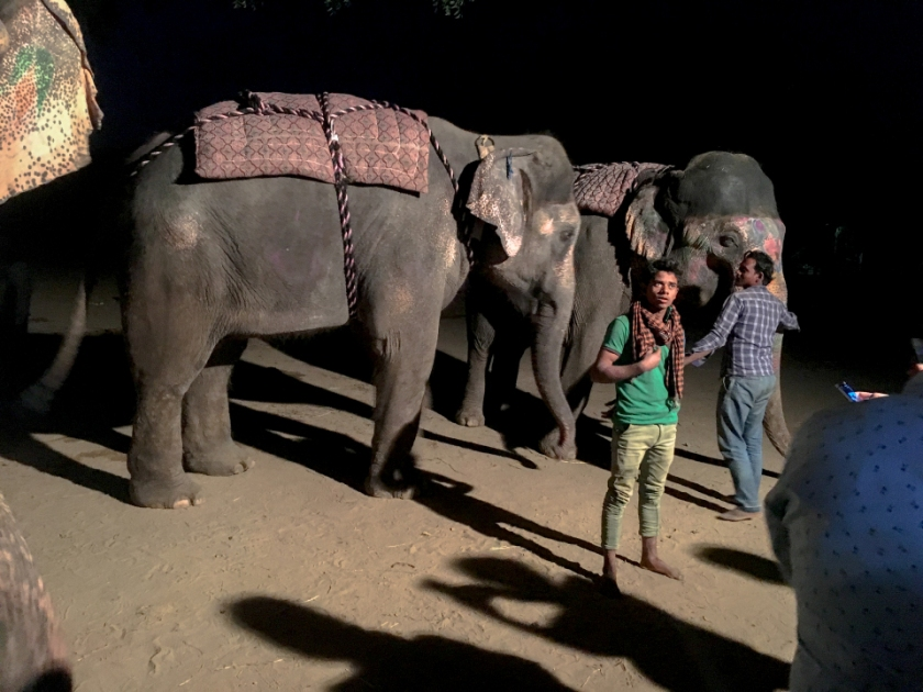 India IPhone-181_1010