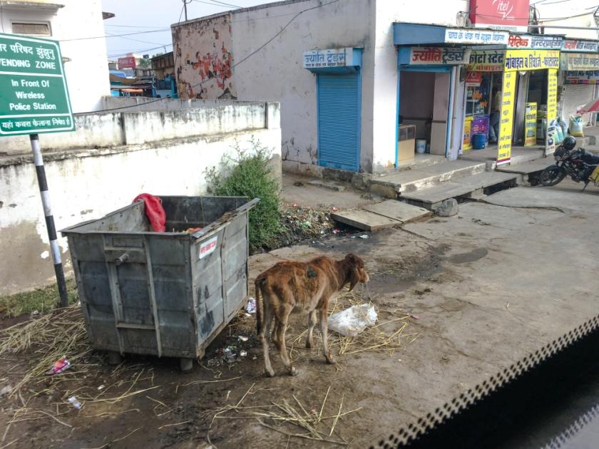 India IPhone-277_1186