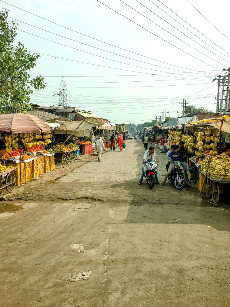 India IPhone-303_1194