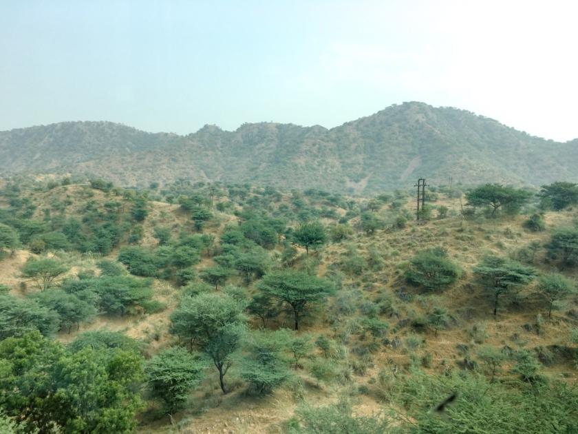 India IPhone-309_1198