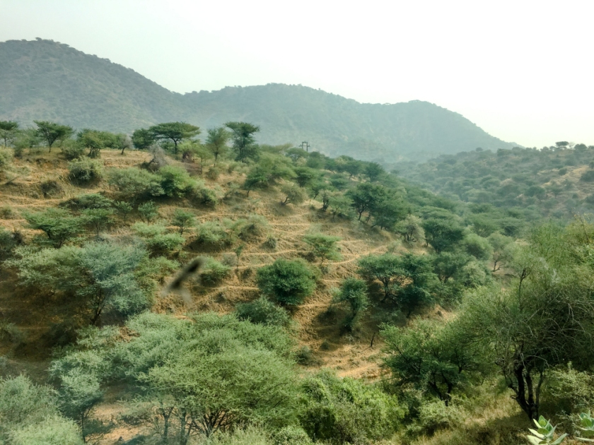 India IPhone-313_1199