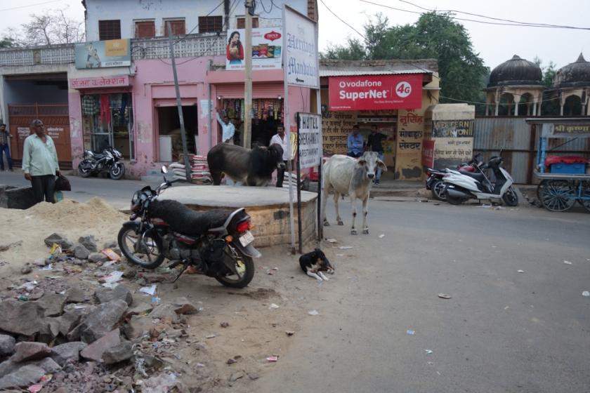 India S 111318 1291_1284