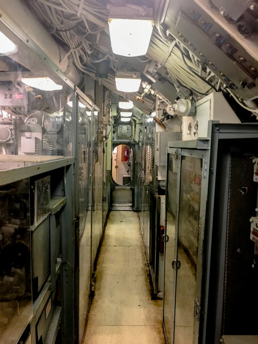 LR Exported Charleston SC-54