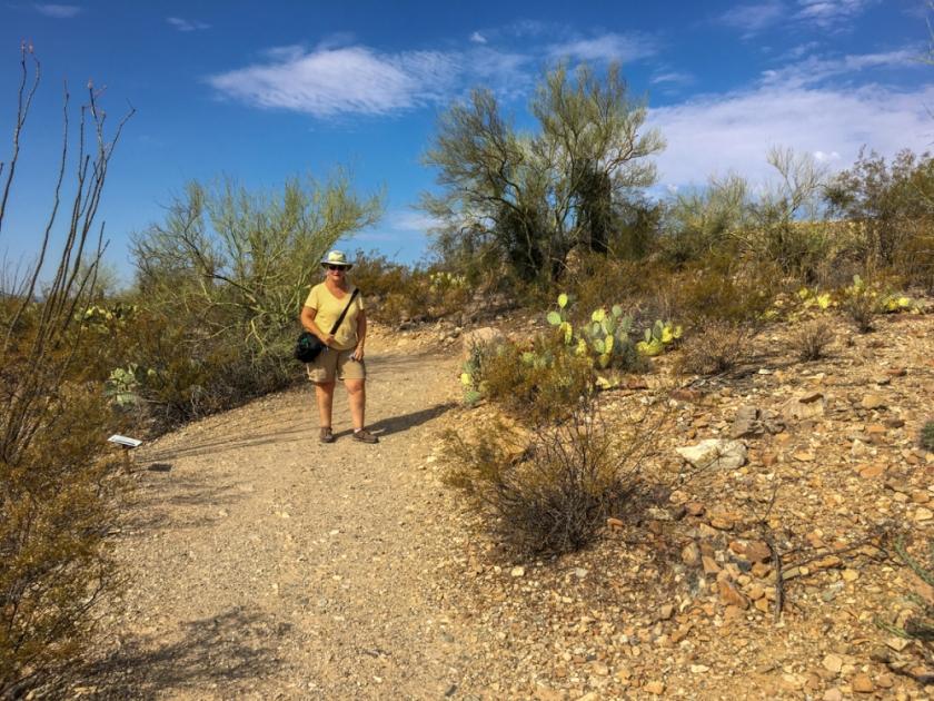 LR Exported Tucson AZ-110