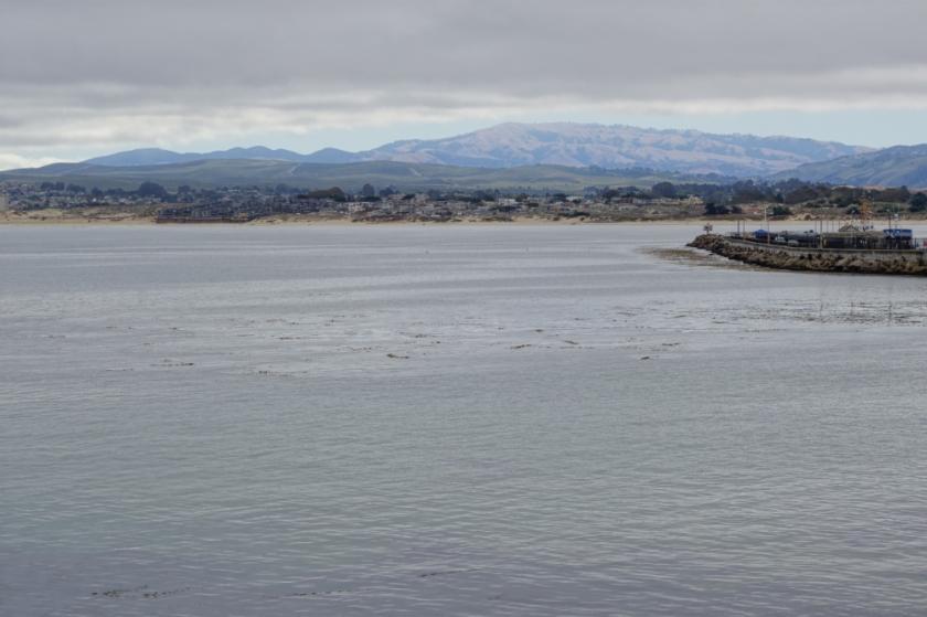 Monterey-2