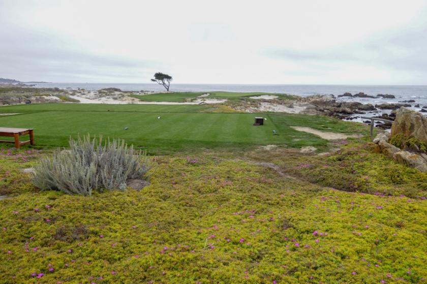 Monterey-6