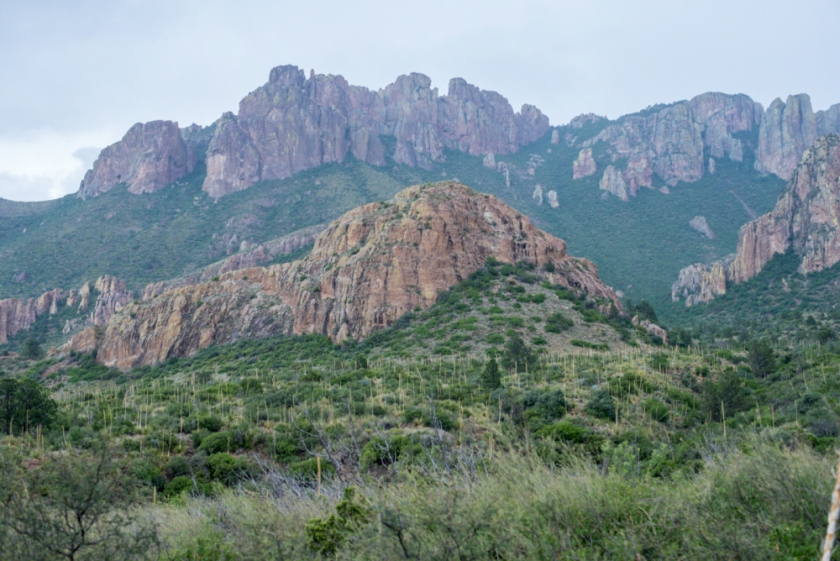 Terlinqua Big Bend -9_01