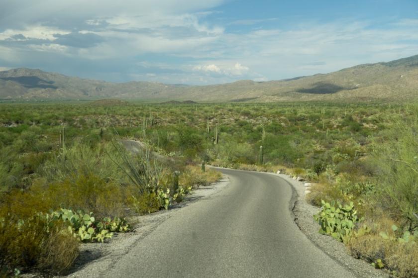 Tucson-6_01